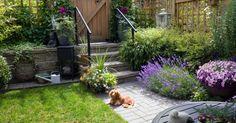 """Một """"ốc đảo"""" vườn tược nhỏ với rất nhiều những loại cây hoa và bộ cổng tường rào cao cấp khiến người nào cũng ao ước được sở hữu."""