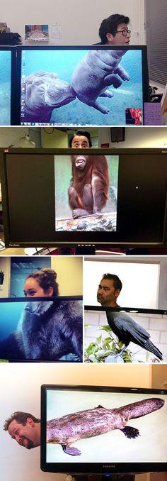 10+ photos amusantes révèlent ce que font les gens lorsqu'ils s'ennuient au travail | ipnoze