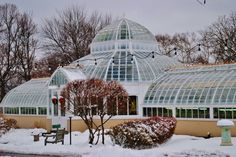 FRICK Mansion own Greenhouse - onsite / Pittsburgh, PA.
