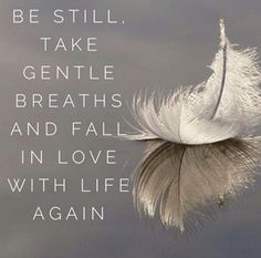 Be still, take gentle breaths... - One Planet One Place