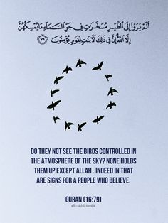 Do they not see the birds controlled in the atmosphere of the sky? None holds them up except Allah . Indeed in that are signs for a people who believe.  Surah An-Nahl
