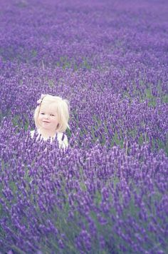 Hampshire Photographer |Lavender field mini portrait session| portrait photography| child photography