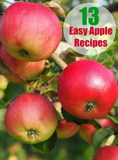 13 delicious easy apple recipes for fall. Delicious healthy dessert ideas that include pie, cake and even vegetarian options!
