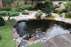 Beautiful Backyard Fish Pond Landscaping Ideas 48