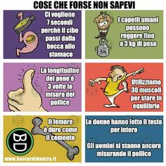 Cose che forse non sapevi | BastariDentro Funny Pins, A Funny, Really Funny, Funny Texts, Verona, Funny Images, Funny Pictures, Cute Phrases, Funny Scenes