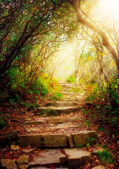 Stairs with sun beams by Kevin Carden on 500px