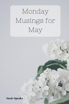 I've had a revamp on the blog, and a lot of exciting plans for May