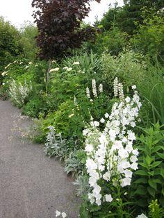 Den hvide have
