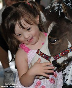Miniature Therapy Horses of Gentle Carousel.  .