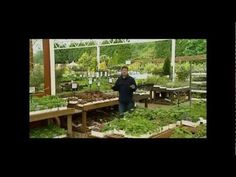 How To Be A Gardener  Understanding Plants   Part Two