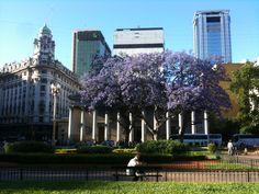 Plaza de Mayo, Catedral Metropolitana de Buenos Aires, calle San Martín y avenida Rivadavia