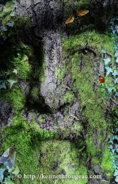 Green man (God cursed to live in stone so that he can remain on Earth to watch over his mortal descendants/creations throughout time)