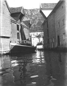 Boder i Sandviken fra sjøen fra marcus. Bergen, Norway Landscape, Abstract, Artwork, Vintage, Summary, Work Of Art, Auguste Rodin Artwork, Artworks