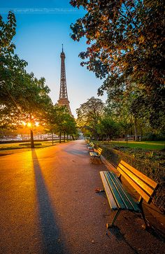 Eiffel Tower- Morning light - Paris