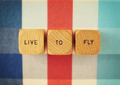 Live To Fly Vintage Word Dice