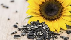 Magnesium: An Essential Supplement for Psychiatric Patients