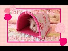 DIY Guinea Pig Hideaway Tutorial - YouTube