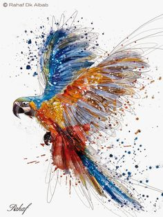 It is of type png. It is related to watercolor arts art anteater digital illustration eagle owl painting vertebrate drawing graphic design paint duiker moggie graphic arts wing. Watercolor Bird, Watercolor Animals, Watercolor Paintings, Bird Paintings, Colorful Animal Paintings, Watercolor Background, Resin Paintings, Colourful Art, Tattoo Watercolor