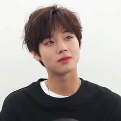 K Idols, My Boys, Tea Party, Angels, Kawaii, Bts, Wallpapers, Kpop, Park
