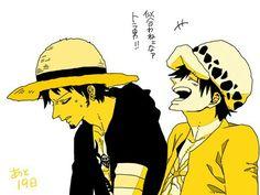 O Luffy fica lindo com o chapéu do Law