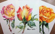 watercolorgallery #watercolorist #art #artstudio #aquarius #watercolor #roses #flower #waterblog #artists #flowers #aquarelle #watercolorstyle
