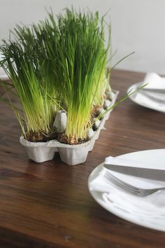 10 Easy DIY Centerpiece Options (That Aren't Flowers!) | HGTV >> http://www.hgtv.com/shows/lazy-entertainer/non-floral-diy-centerpiece-design-ideas-pictures?soc=pinterest