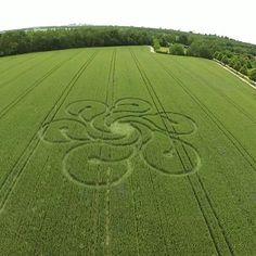 Crop circle photo by Flying Dreams
