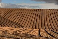 Ploughed field in Condover   Flickr - Photo Sharing!