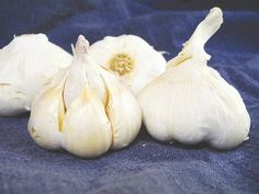 Roasting garlic opens up an entirely different flavor pallete.