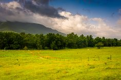 Cades Cove is a favorite of locals and visitors alike!