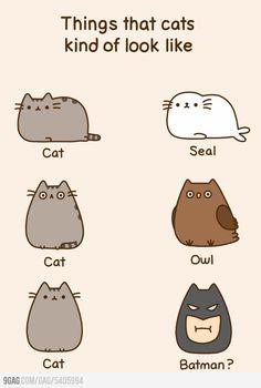Pusheen the cat <3 :-) love the batman one