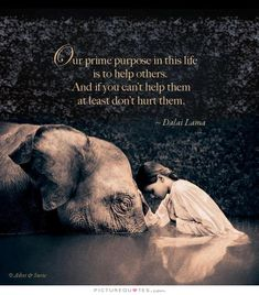 Our prime purpose in this life is to help others. And if you can't help them, at least don't hurt them. Picture Quotes.