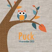 Geboortekaartje Puck  www.hetuilennestje.nl Boom, uil, herfst, blaadjes, vogel, linnen.