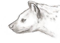 drawing, coal on paper © Cornelia Brizsak 2014 Paper, Drawings, Sketch, Portrait, Drawing, Resim, Paintings, Doodle