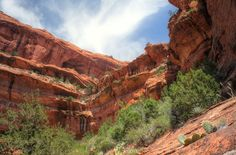 Travel | Arizona | Arizona Adventures | Exploration | The Great Outdoors | Amazing Places | Places To See In The US