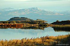 Argentina #unafotoalgiorno El Calafate laguna Nimez