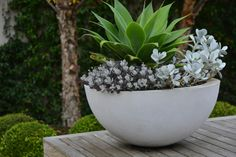 love the clean modern, ever~fresh appeal, 'True-form garden planters'... Peter Fudge designs