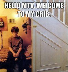 Harry Potter; MTV Cribzz