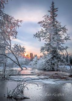 🇫🇮 Talvi (Suomi) // Winter (Finland) by Asko Kuittinen ❄️🌅 Winter Love, Winter Snow, Winter Pictures, Nature Pictures, Winter Photography, Landscape Photography, Raindrops And Roses, Winter Magic, Winter Scenery