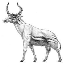 Sivatherium (Artiodactyla: Giraffidae) Plioceno a Holoceno desde África a la India by dustdevil on deviantART