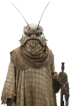 Euphaus Biro was an insectoid individual active during the war between the First Order and the Resistance. Appearances Star Wars: Episode IX The Rise of Skywalker (First appearance) Science Fiction, Star Wars Species, Star Wars Canon, Star Wars Characters Pictures, Alien Character, Alien Design, Star Wars Day, Alien Races, Star Wars Costumes