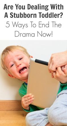 Dealing with a Stubborn Toddler? 5 Ways to End the Drama Now! Just in case! Hahah Are You Dealing With A Stubborn Toddler? 5 Ways To End The Drama Now!Just in case! Hahah Are You Dealing With A Stubborn Toddler? 5 Ways To End The Drama Now! Parenting Toddlers, Parenting Books, Gentle Parenting, Parenting Humor, Parenting Articles, Disciplining Toddlers, Practical Parenting, Peaceful Parenting, Natural Parenting