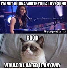 Grumpy Cat sings Love Song by Sarah Bareilles Funny Grumpy Cat Memes, Cat Jokes, Funny Songs, Harry Potter, Angry Cat, Animal Quotes, Animal Memes, Funny Cat Videos, Love Songs