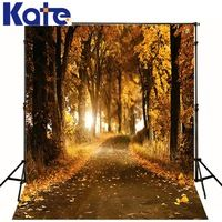 300Cm*200Cm(About 10Ft*6.5Ft)T Background Falling Leaves Woods Photography Backdropsthick Cloth Photography Backdrop 3225 Lk
