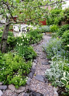 Landet Krokus: Blommig fredag - tema årets trädgårdsplaner