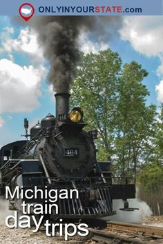 What better way is there to see the beautiful state of Michigan than by taking a train ride? Take a look at these unique Michigan train day trips. Michigan Day Trips, Michigan Vacations, Michigan Travel, Michigan Facts, Michigan Tourism, Train Travel, Travel Usa, Train Trip, Fun Travel
