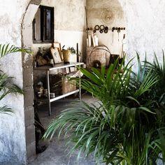 Patricia Larsen's Home in Mexico -  © 2010 Patricia Larsen - Painting & Ceramics