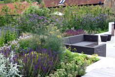 Barn Conversion Contemporary Family Garden By London garden designer Cassandra Crouch. A planting plan using a contemporary mix of herbaceous perennials and  grasses, with strong forms for winter interest, was designed to soften the straight lines of the design and enhance the relaxed modern feel.