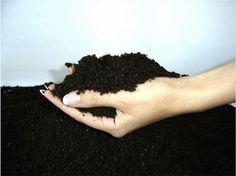 Restoring Damaged Soil
