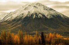 I went to Alaska in late august looking for fall and winter scenery and found it as seen here in Denali Park in the mountains. Storm Photography, Winter Scenery, Fire And Ice, Virtual World, Mount Rainier, Alaska, Wildlife, That Look, Around The Worlds